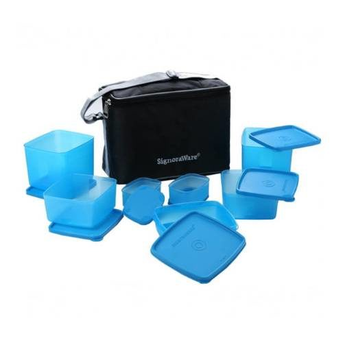 Signoraware Picnic Lunch Box with Bag