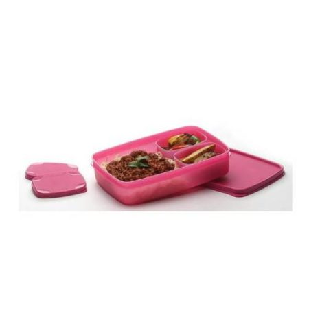 Signoraware Compact Kids Lunch Box (Small)