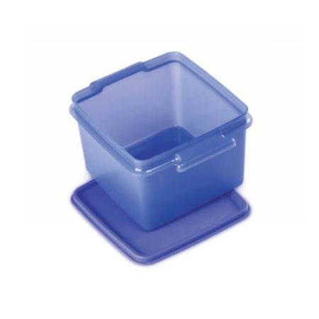 Signoraware Easy To Carry Big Container