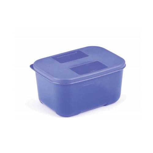 Signoraware Icy Cool Big Container