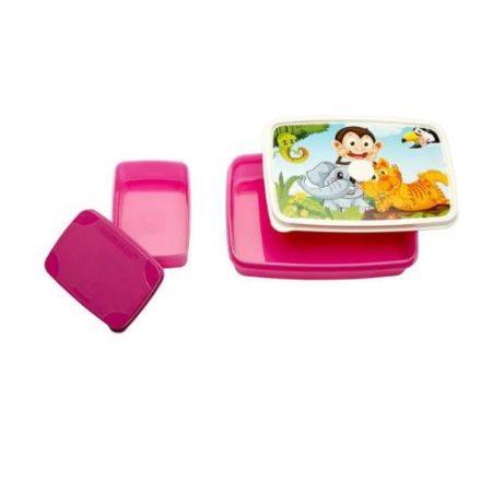 Signoraware Jungletime- Compact Kids Lunch Box (Small)