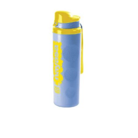 Nayasa Real Steel Insulated Water Bottle