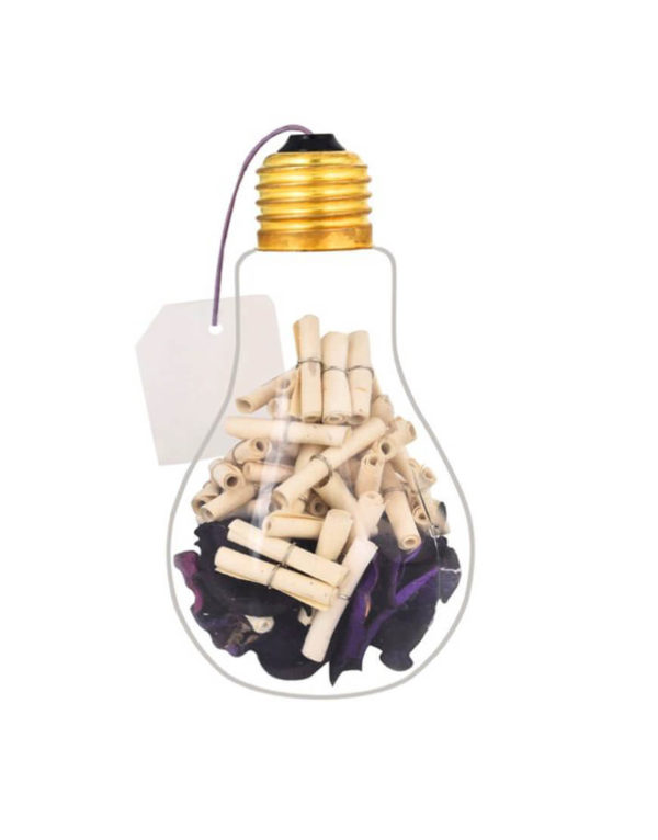 Message in a Bulb