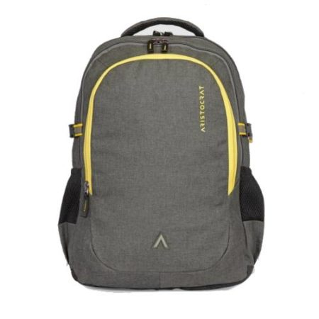 Aristocrat Grid 1 Laptop Backpack