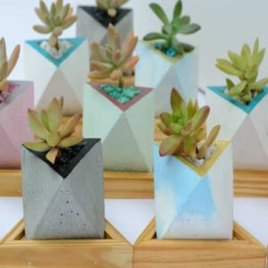 Triangle Shape Planter