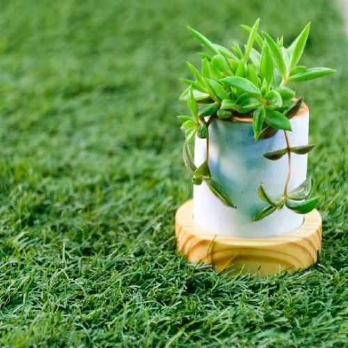 Goblet of Greens Planter