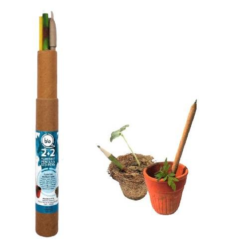Plantable Paper Pen& Pencils Combo Set -4